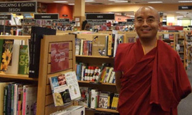 Rinpoche's Videos