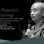 Mingyur Rinpoche's Bardo Teachings
